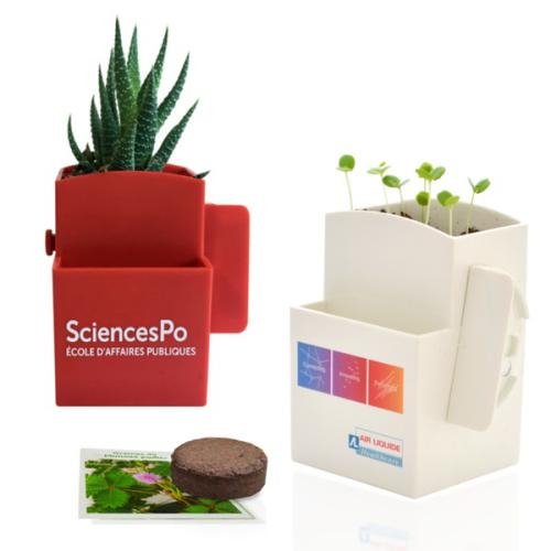Kit de plantation vegetal'box personnalisable - fantas.fr